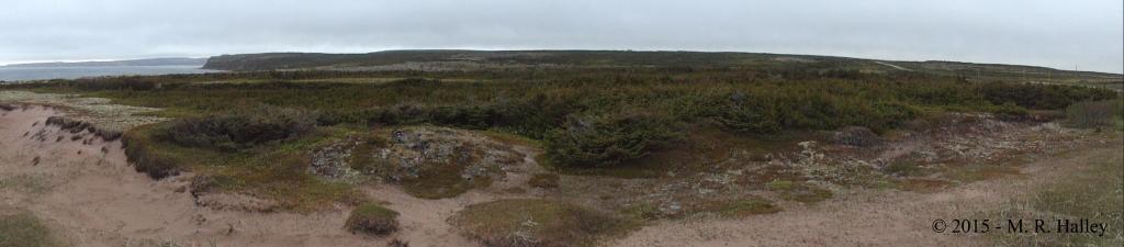 LAnseAmour_BurialGround_Labrador